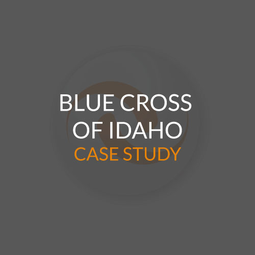 Blue-Cross-of-Idaho-Case-Study-Website-Image